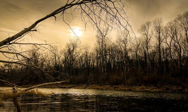 Sonnen Foto's